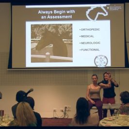 Thuy Bridges presents at Physiotherapy conference